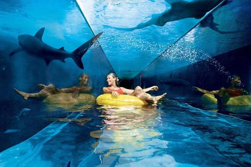 Bijzonder en groot aquapark in Dubai