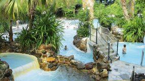 Gaaf subtropische zwembad op vakantiepark in eigen land