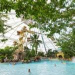 Subtropisch zwembad bij leuk vakantiepark in België