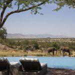 Beleef een luxe vakantie in de Afrikaanse wildernis vanuit top hotel