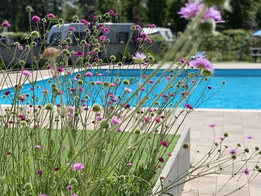 Vakantiepark/camping in Brabant met binnen- en buitenzwembad