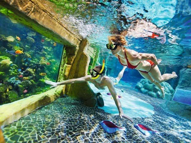 Grote waterparken in Nederland | Aqua Mundo Center Parcs